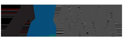 Anest Iwatta Logo
